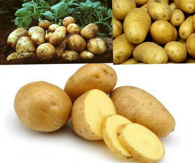What Are The Advantages Of Eating Potatoes?