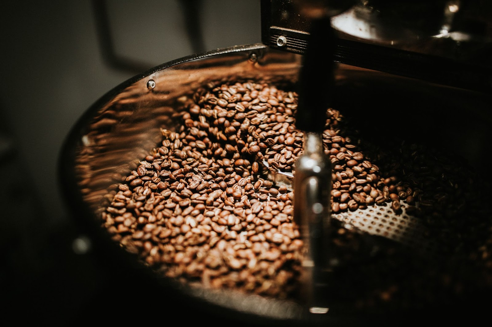 Why Are Arabica Beans So Popular For Coffee?