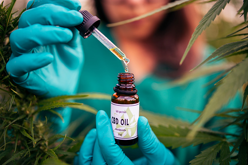 Is Delta 8 the Same as CBD? What's the Difference?